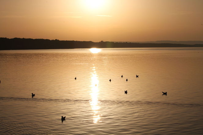 Sonnenuntergang, Meer, Binnengewässer, Fotografie,