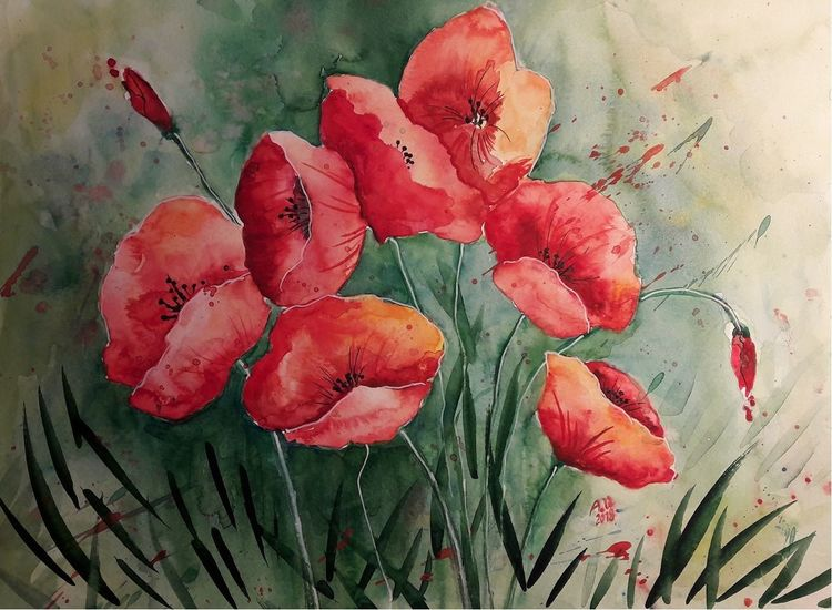 Mohn, Blumen, Rot, Pflanzen, Aquarell