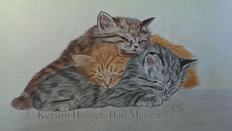 Katze, Pastellmalerei, Zeichnung, Katzenzeichnung, Dreamteam, Zeichnungen