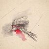 Vogel, Malerei, Unfall, Illustrationen