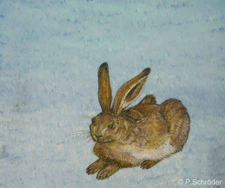 Hase, Natur, Dürer, Tiere, Gegenständlich, Horizontal gespiegelt