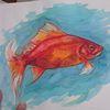 Fisch, Goldfisch, Wasser, Tiere