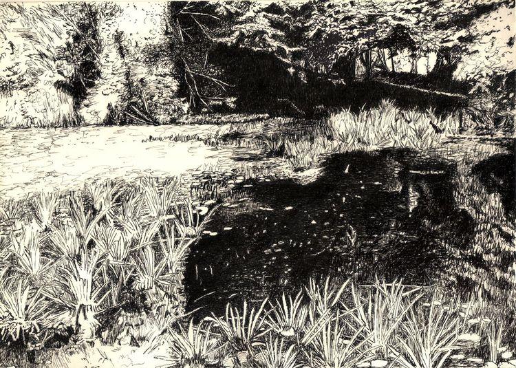 Baum, Schilf, Stille, Zeichnung, Park, Tuschmalerei
