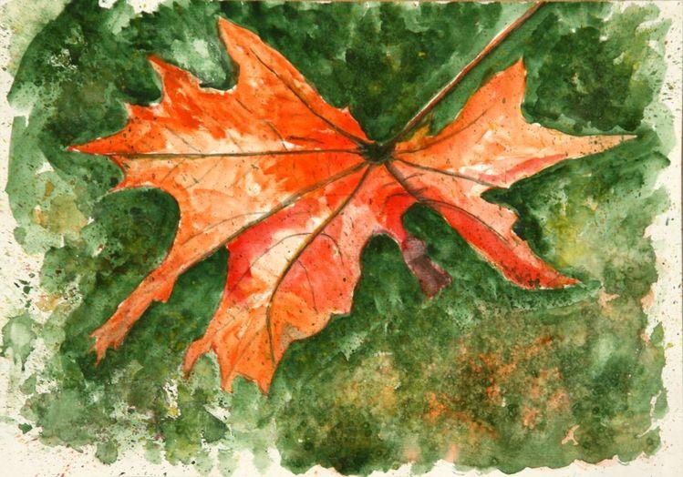 Herbst, Rot, Blätter, Ahorn, Mischtechnik