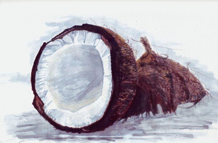 Hart, Schale, Kokosnuss, Zeichnungen