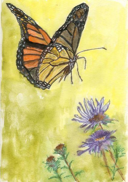 Lebewesen, Natur, Schmetterling, Blumen, Tiere, Mischtechnik