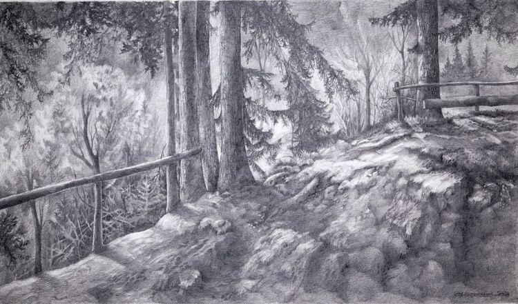 Wald, Baum, Landschaft, Zeichnungen, Waldweg
