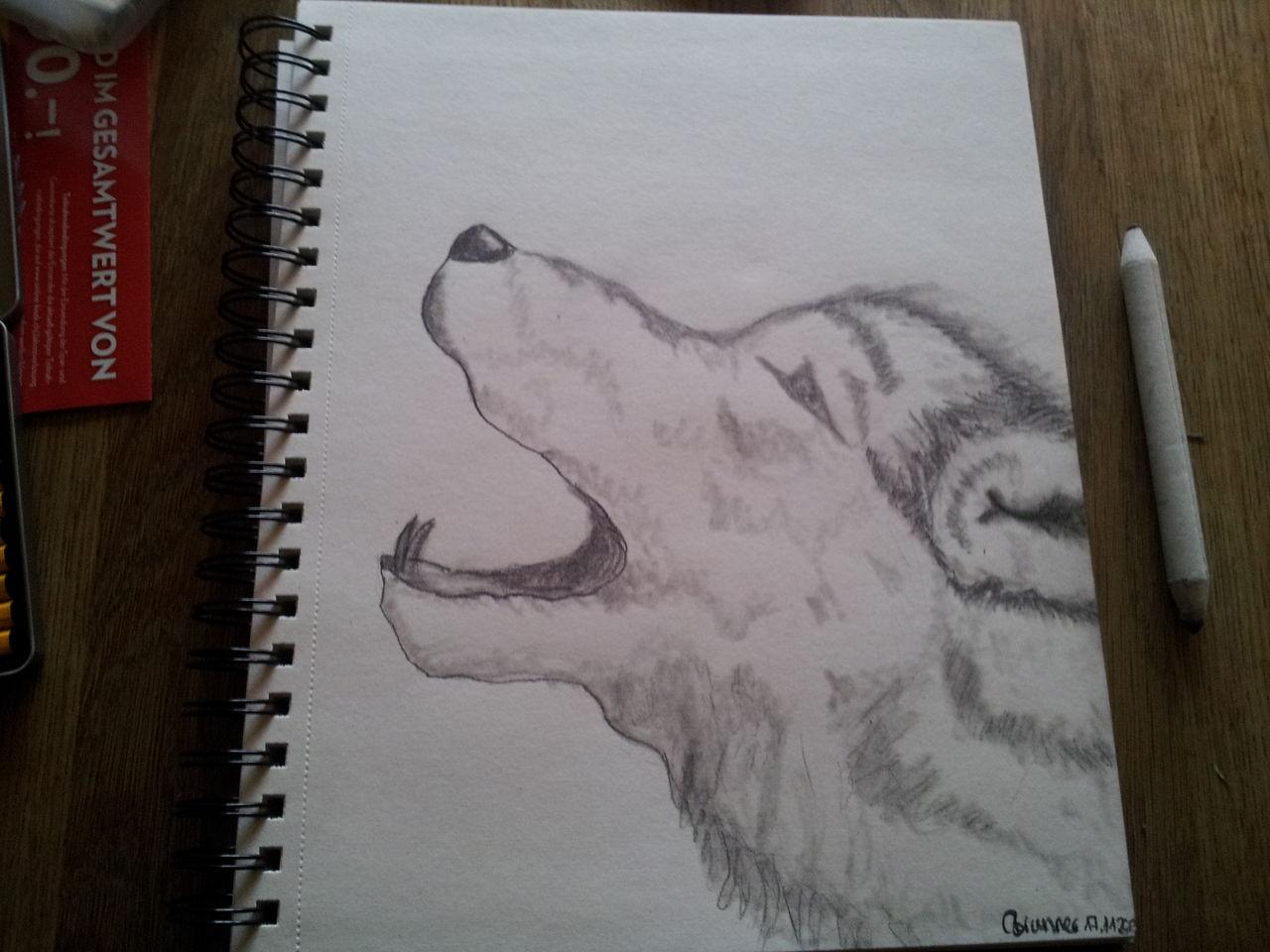 Wolf Bleistiftzeichnung Zeichnungen Wolf Von Carolalpina Bei