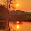 See, Baum, Sonnenuntergang, Fotografie