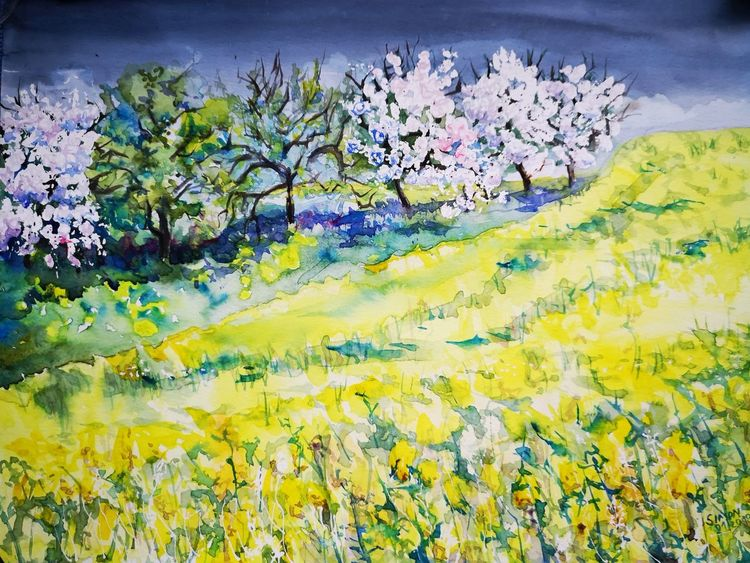 Frühling, Baumblüte, Raps, Aquarell