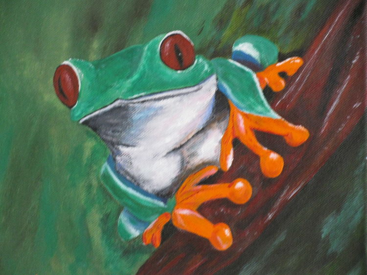 Grün, Natur, Frosch, Rotaugenfrosch, Tiere, Malerei