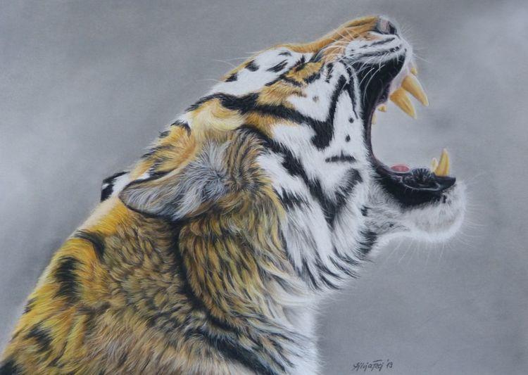 Pastellmalerei, Zeichnungen, Wildtiere, Tiger,