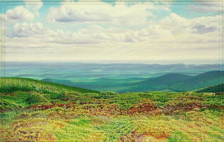 Harz, Berge, Lichtmalerei, Sommer, Pflanzen, Natur