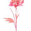Aquarellmalerei, Wasserfarbe, Blumen, Illustration