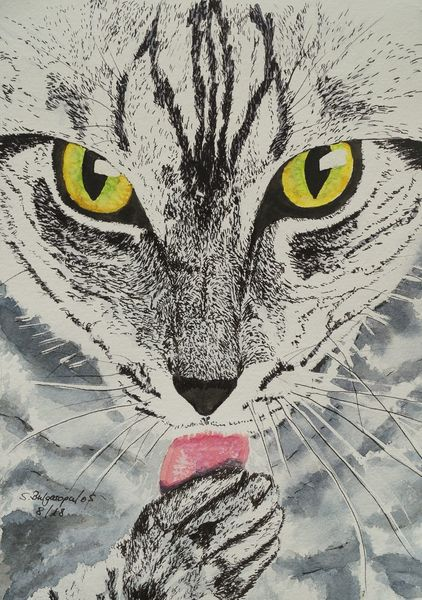Schwarzweiß, Augen, Katze, Aquarell