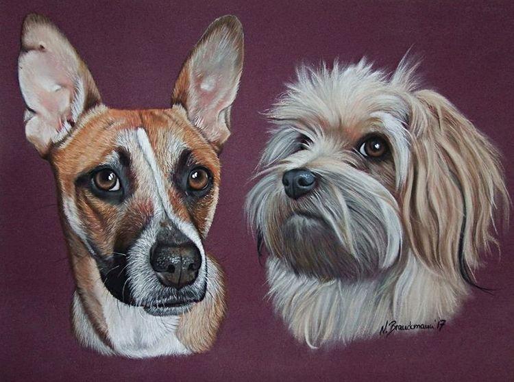 Realismus, Hund, Tiere, Hundeportrait, Pastellmalerei, Tierportrait