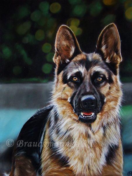 Pastellmalerei, Castell, Schäfer, Hund, Tiere, Haustier