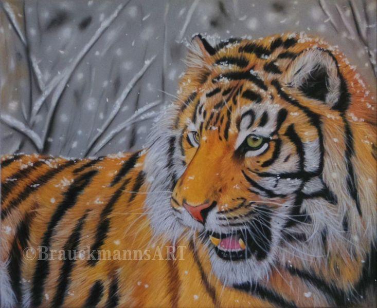 Tierzeichnung, Katze, Portraitzeichnung, Fotorealismus, Winter, Schnee
