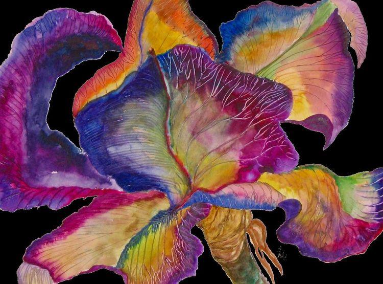 Blumen, Blüte, Iris, Aquarellmalerei, Aquarell