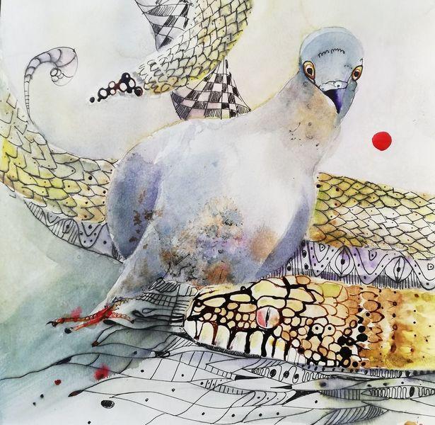 Malerei, Taube, Vogel, Aquarell