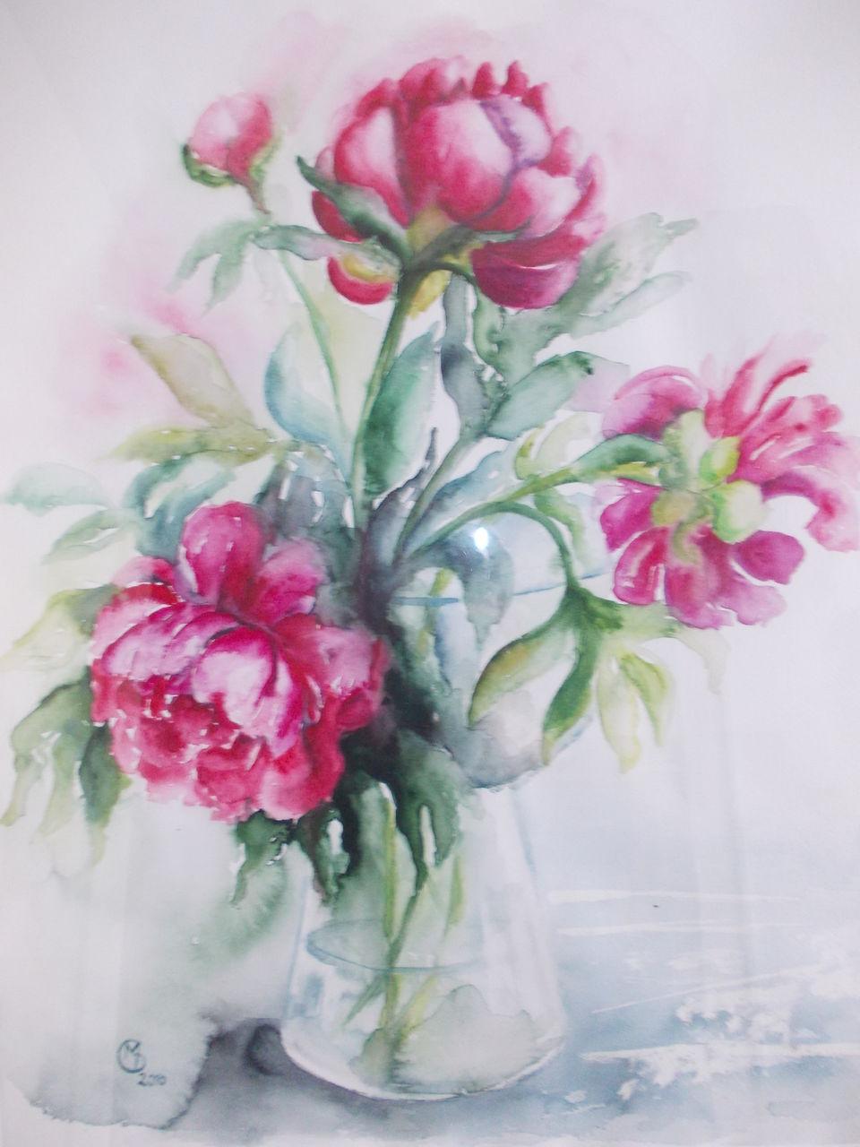 bild vase pfinstrosen aquarell pflanzen von dorothy maurus bei kunstnet. Black Bedroom Furniture Sets. Home Design Ideas