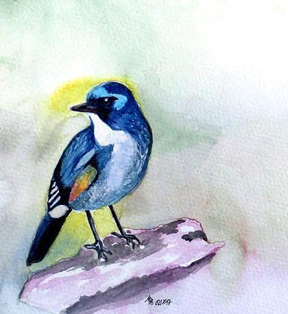Äste, Malerei, Vogel, Aquarell, Blaumeise