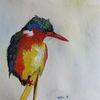 Tiere, Vogel, Aquarellmalerei, Aquarell