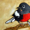 Aquarellmalerei, Tiere, Vogel, Aquarell