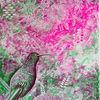 Malerei, Gemälde, Rosa, Vogel