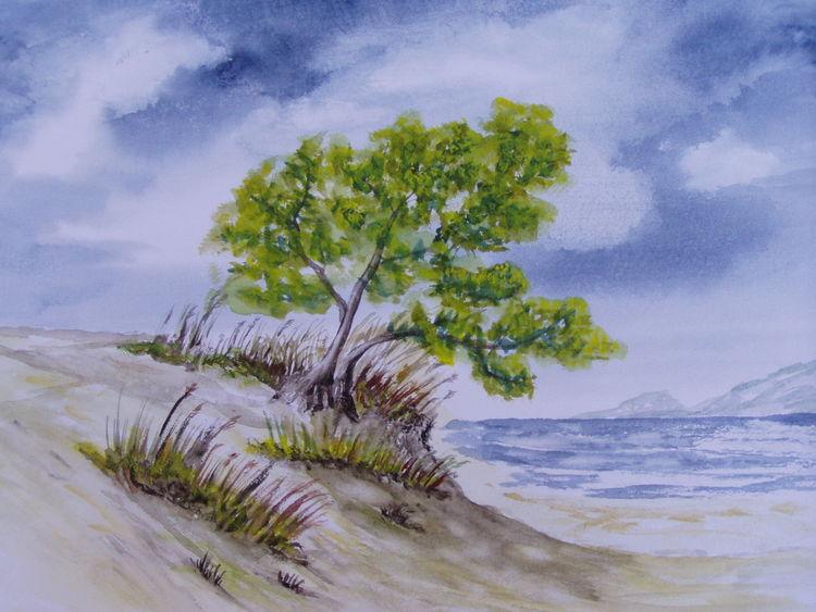 Dünen, Himmel, Schatten, Wolken, Baum, Aquarell