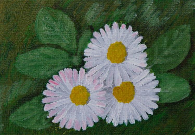 Gänseblümchen, Landschaft, Blumen, Wiese, Pflanzen, Malerei