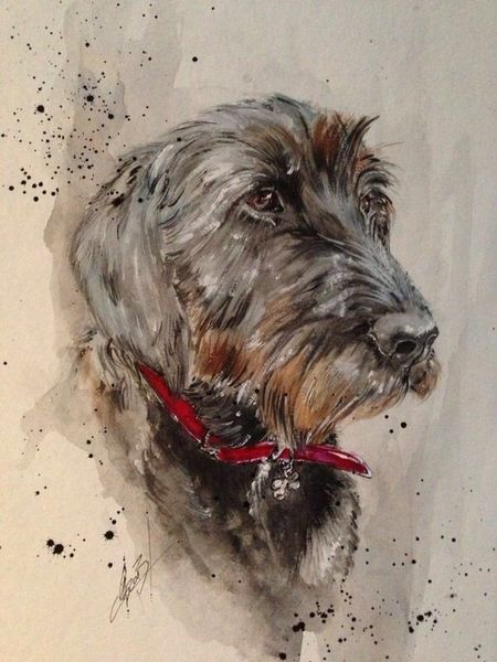 Hund, Portrait, Snoopy, Aquarell