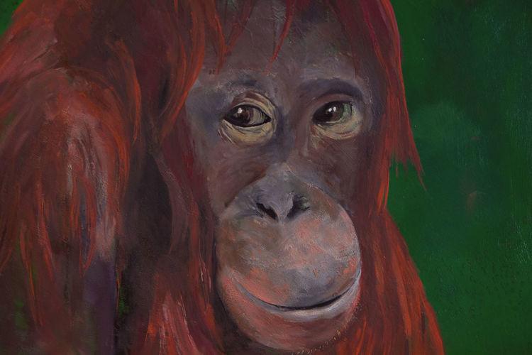 Tiere, Farben, Acrylmalerei, Malerei, Orang