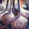 Violett, Aquarellmalerei, Garten, Knoblauch
