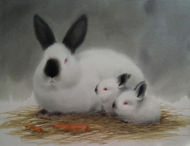 Hase, Natur, Tiere, Aquarell