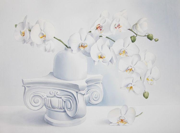 Stillleben, Blumen, Orchidee, Aquarell