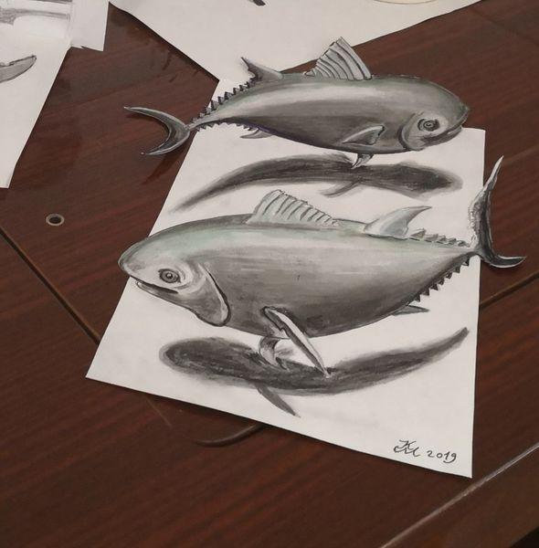 Fische, Bleistiftzeichnung, Kreide, Zeichnungen