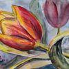 Tulpen, Zweifarbig, Rotgelb, Aquarell