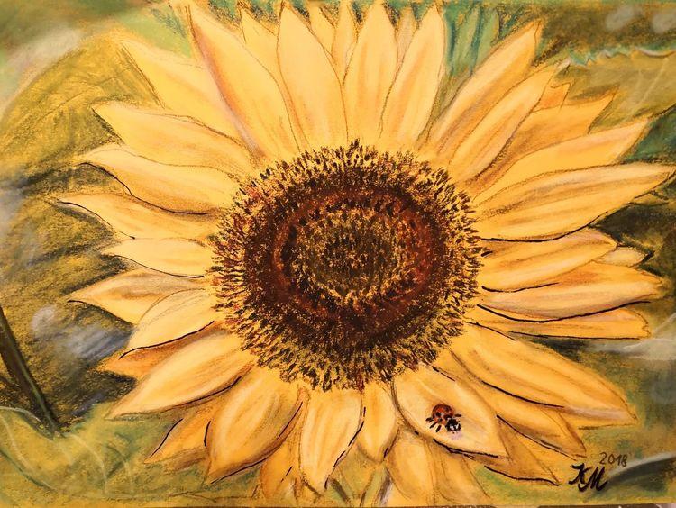 Käfer, Sonnenblumen, Pastellmalerei, Gelb, Zeichnungen