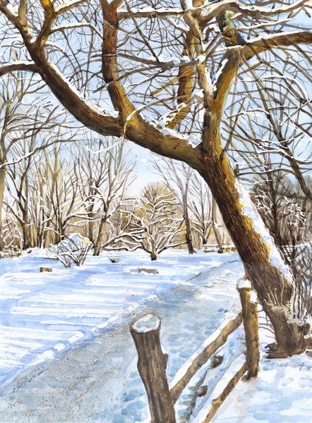 Winter, Schnee, Baum, Zaun, Aquarell, Zoo