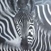 Schwarz weiß, Zebra, Herd, Malerei