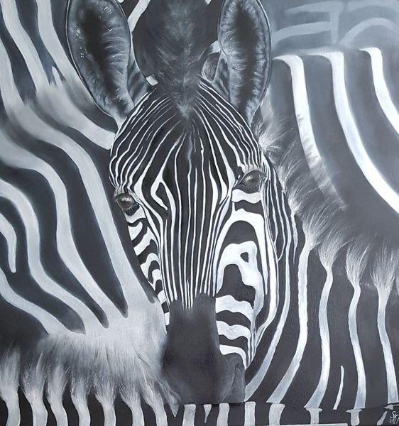 Zebra, Herd, Schwarz weiß, Malerei, Tiere