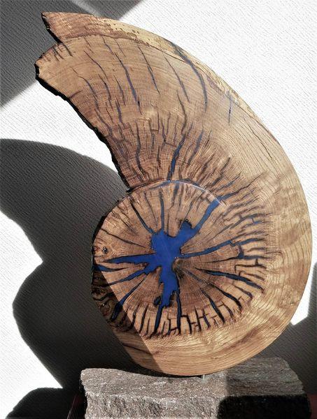 Scheibe, Eichen, Gerissen, Holz, Spirale, Plastik