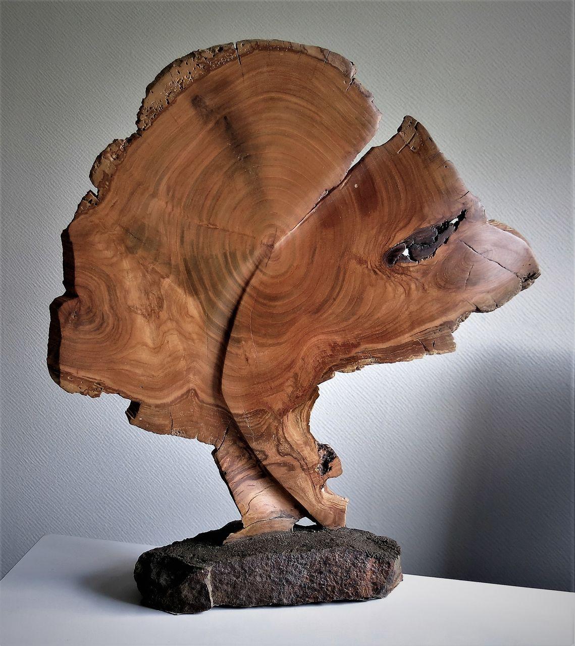 Lebensbaum - Baum, Sockel, Äste, Skulptur von Katzenwerker bei KunstNet