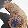 Scheibe, Eichen, Gerissen, Holz