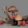 Physalis, Pilze, Rote blüten, Herbst