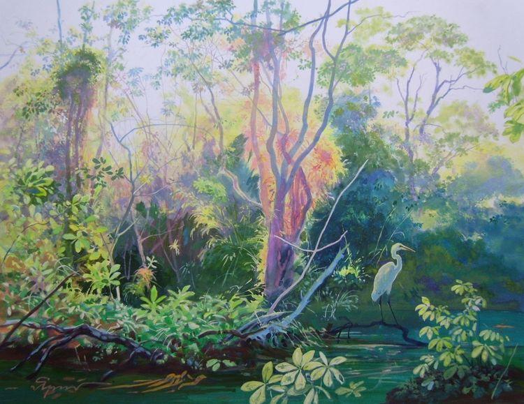 Amazonas, Morgen, Rio, Sumpf, Reiher, Malerei