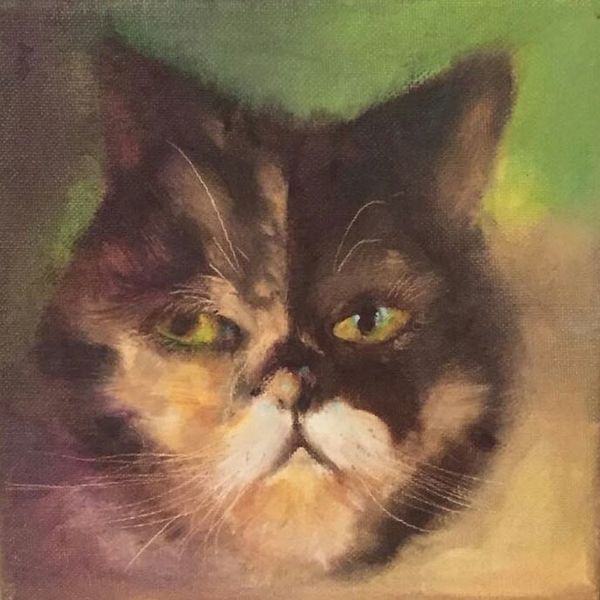 Haustier, Katze, Grampy, Malerei
