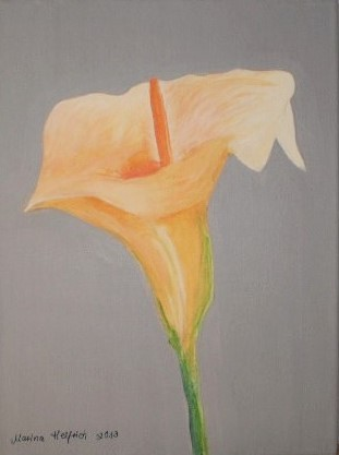 Orange, Blumen, Calla, Malerei