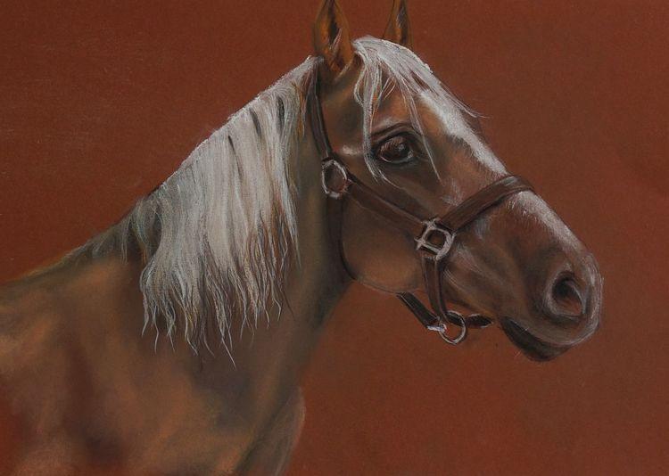 Equus caballus, Pferde, Tiere, Malerei